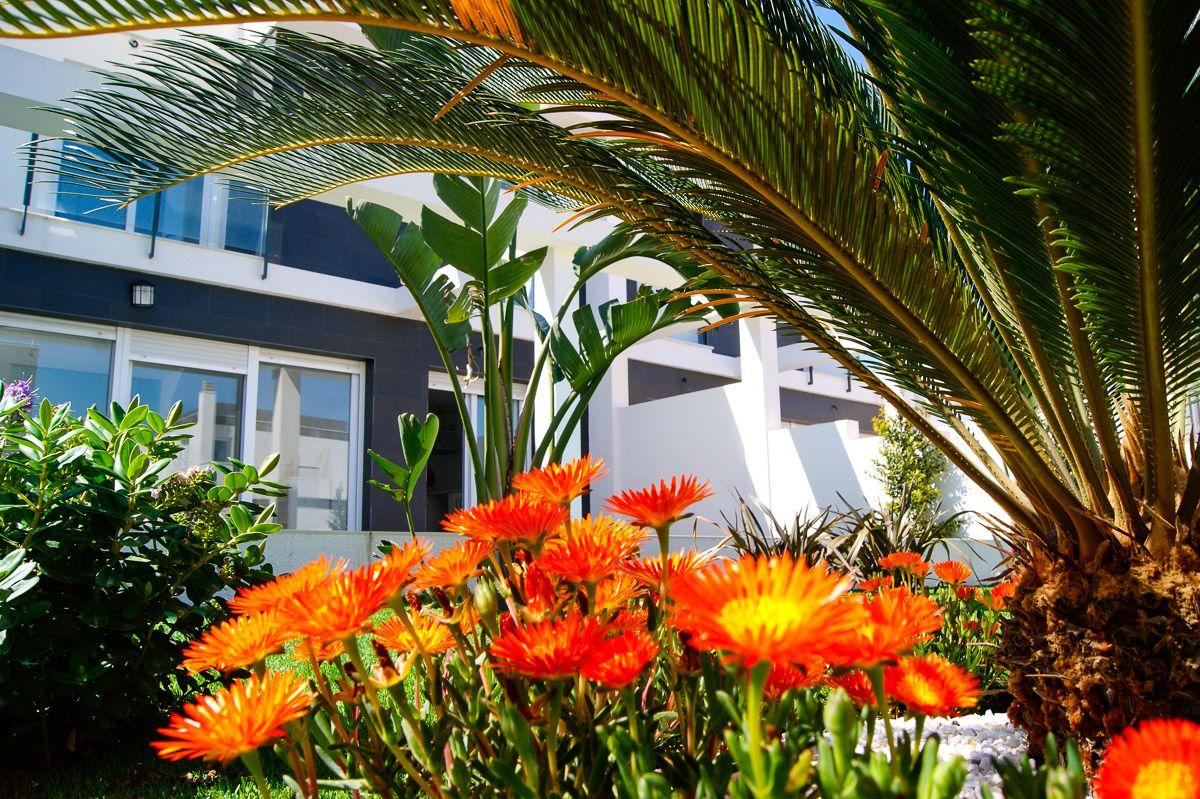 Costa Blanca South - Modern desgin villas with garden and underground in Gran Alacant 8