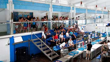 Fish auction, Calpe