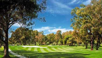 Atalaya Golf club - Marbella