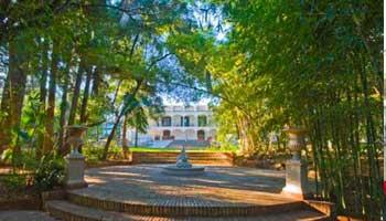 La Consula - Malaga