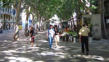 Paseo por la ciudad
